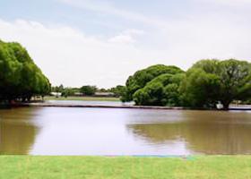 Brownfield Parks